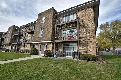 Chicago Ridge Condo/Townhouse New: 9823 South Nottingham Avenue #109