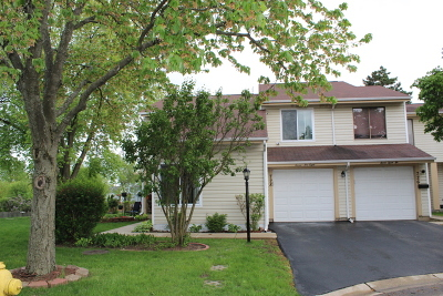 Du Page County Condo/Townhouse New: 728 Colorado Court #2-27-1