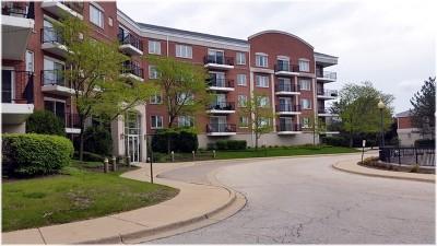 Buffalo Grove Condo/Townhouse New: 351 Town Place Circle #411
