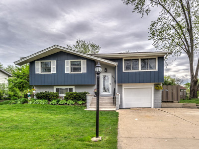 Schaumburg Single Family Home New: 1635 Kingston Lane