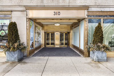 Chicago Condo/Townhouse New: 310 South Michigan Avenue #202