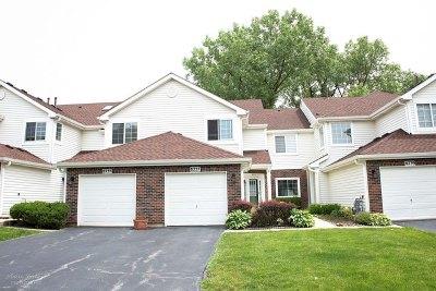Darien Condo/Townhouse New: 8237 Ripple Ridge #8237