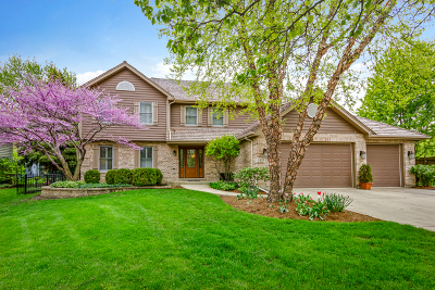 Libertyville Single Family Home New: 1424 Pine Meadow Court