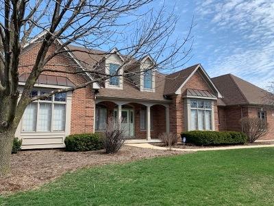 Kane County Single Family Home New: 2603 West Wilson Street