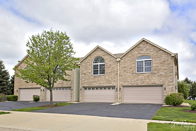 McHenry Condo/Townhouse New: 5850 Fieldstone Trail #5850