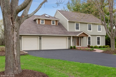 Hawthorn Woods Single Family Home For Sale: 16 Thornfield Lane