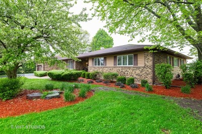 Woodstock Single Family Home New: 12416 Cooney Drive