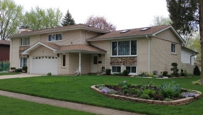 Mount Prospect Single Family Home New: 8 East Jerry Drive