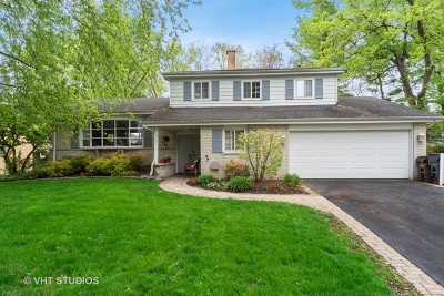 Libertyville Single Family Home For Sale: 915 Fairlawn Avenue