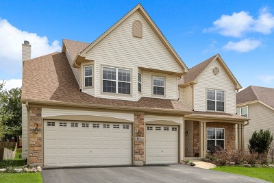 Bartlett IL Single Family Home New: $369,995