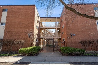 Chicago Condo/Townhouse New: 1545 West Chase Avenue #208