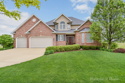 Plainfield Single Family Home New: 25226 West Jackson Lane