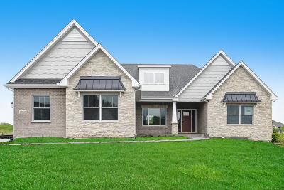 Homer Glen Single Family Home New: 13838 West Stonebridge Woods Crossing Drive