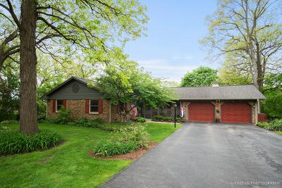 North Aurora Single Family Home For Sale: 3s966 Oakland Lane