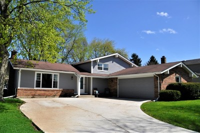 Naperville Single Family Home New: 925 Kennebec Lane