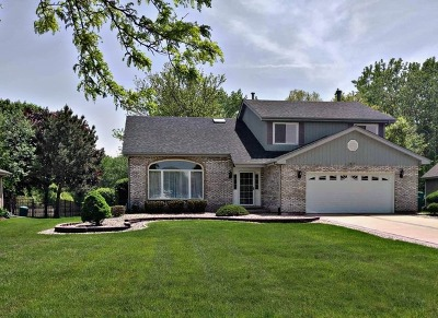 Romeoville Single Family Home For Sale: 817 Erie Drive