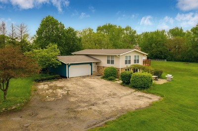Woodstock Single Family Home For Sale: 12120 Pleasant Valley Road