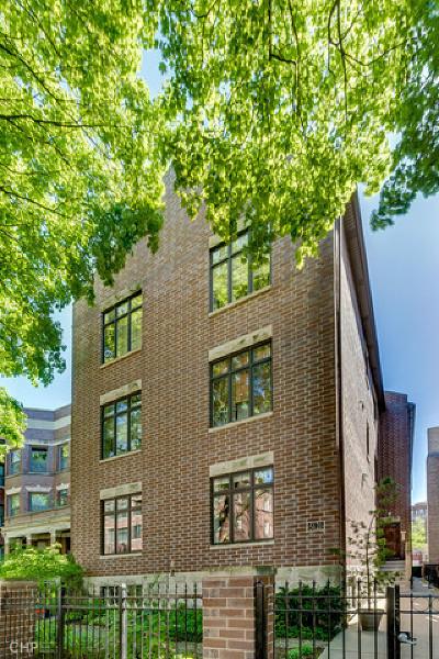Chicago Condo/Townhouse New: 5121 South Kimbark Avenue #1W