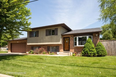 Bensenville Single Family Home Re-Activated: 189 Martha Street