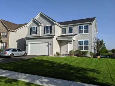 Plainfield Single Family Home New: 6706 Mountain Ridge Pass