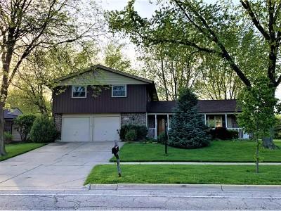 Schaumburg Single Family Home New: 816 South Salem Drive