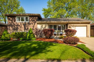 Elmhurst Single Family Home New: 866 South Cedar Avenue