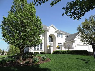 Frankfort Single Family Home For Sale: 22973 Lakeview Estates Boulevard