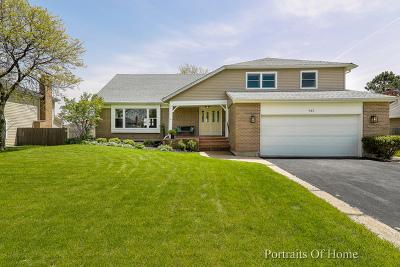 Palatine Single Family Home New: 915 South Harvard Drive