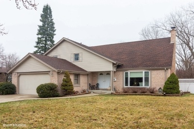 Palatine Single Family Home New: 827 North Sanborn Drive