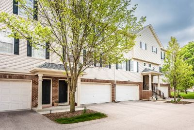 Kane County Condo/Townhouse New: 287 Evergreen Circle