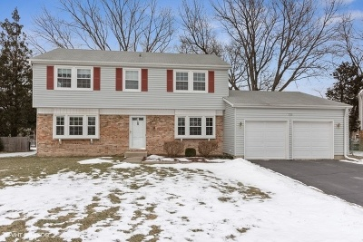 Buffalo Grove Single Family Home New: 933 Alden Lane