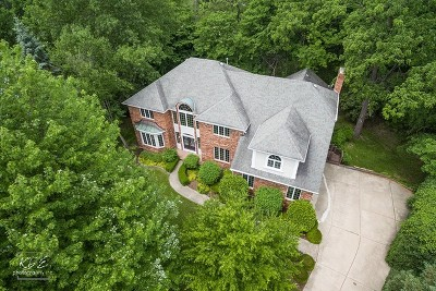 Naperville Single Family Home For Sale: 8s330 Whittington Court