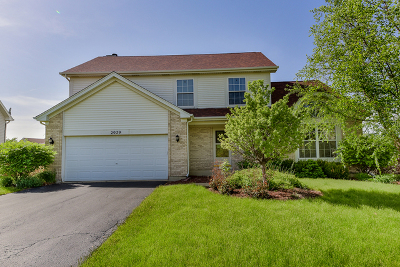 Plainfield Single Family Home New: 2029 Havenhill Drive