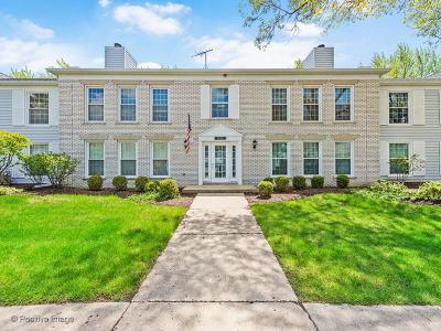 Naperville Condo/Townhouse New: 1170 Spring Garden Circle #70