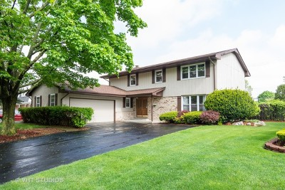 Arlington Heights Single Family Home New: 1620 West Plymouth Drive