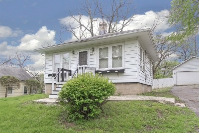 Kane County Single Family Home New: 81 Jerusha Avenue