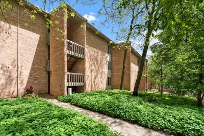 Lisle Condo/Townhouse New: 1605 Fairway Drive #3C