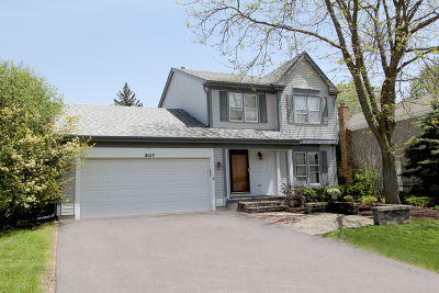Lake Zurich Single Family Home New: 907 Holly Circle