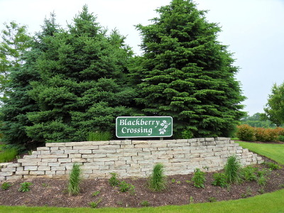 Kane County Residential Lots & Land New: Lot 6 Blackberry Crossing Circle
