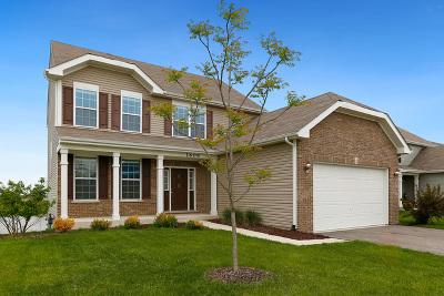 Joliet Single Family Home For Sale: 1609 Seward Road