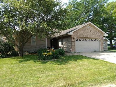 Ogle County Single Family Home New: 8420 South Main Street