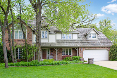 Naperville Single Family Home New: 340 Great Oak Court