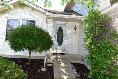 Plainfield Single Family Home New: 2200 Mystic Drive