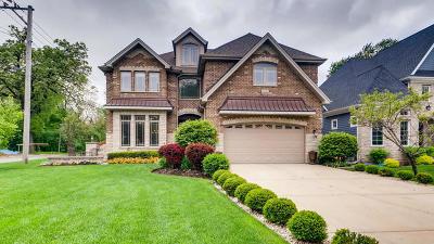 Elmhurst Single Family Home New: 618 South Sunnyside Avenue