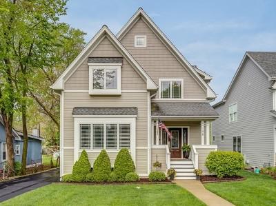 Elmhurst Single Family Home New: 198 North Glenview Avenue