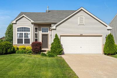 Plainfield Single Family Home Contingent: 2118 Covington Lane