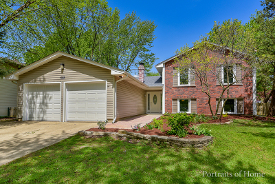Bolingbrook Single Family Home New: 528 Carlyle Lane
