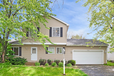 Naperville Single Family Home New: 1313 Knoll Drive