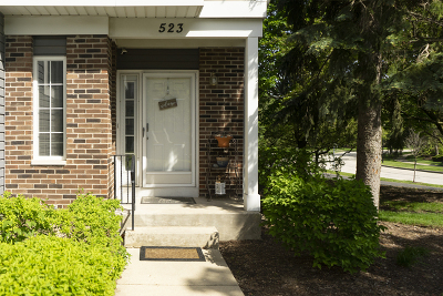 Palatine Condo/Townhouse New: 523 West Parkside Drive #523