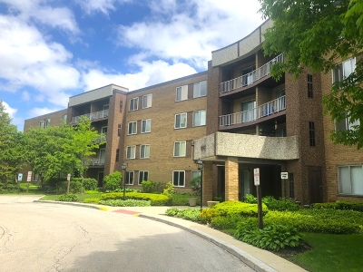 Palatine Condo/Townhouse New: 909 East Kenilworth Avenue #408